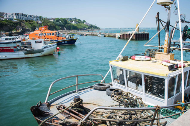 Ballycotton fishing tours